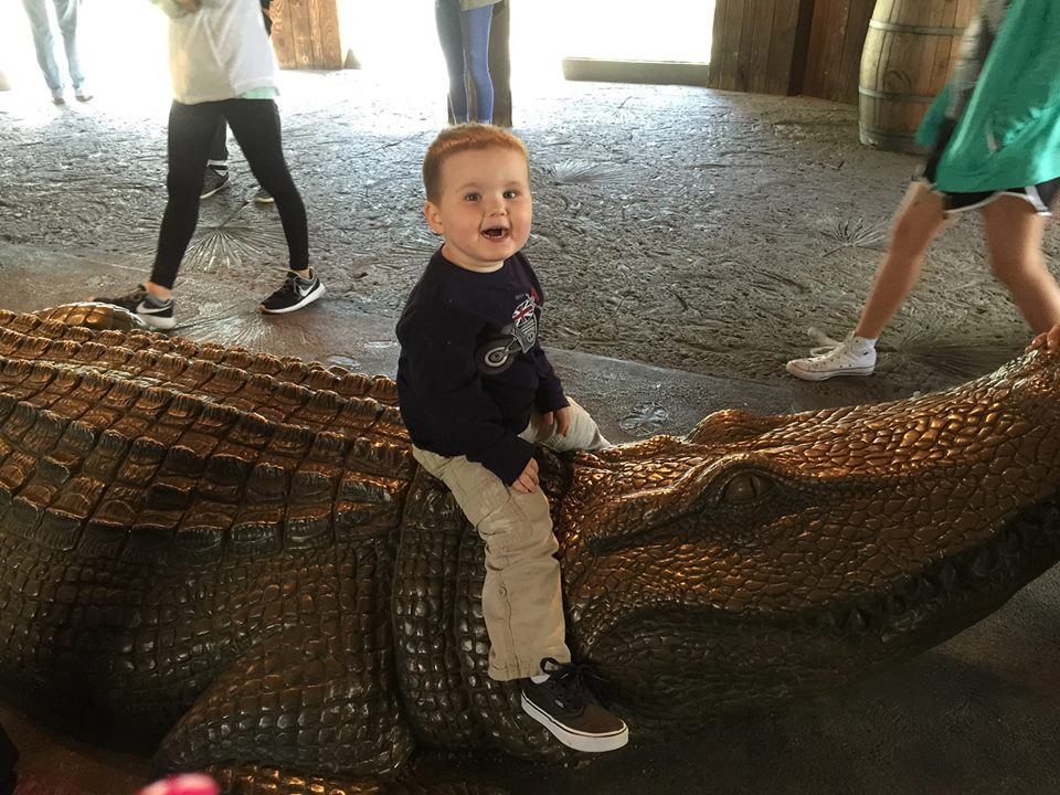 son on alligator at Fort Worth Zoo