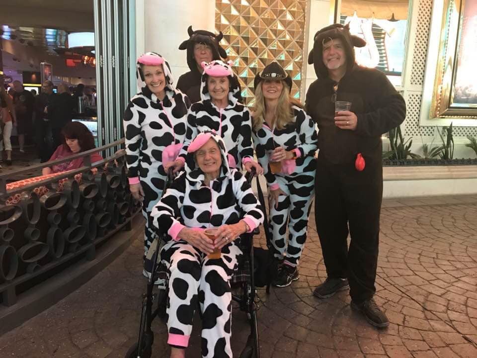 Herd of Cows in Las Vegas