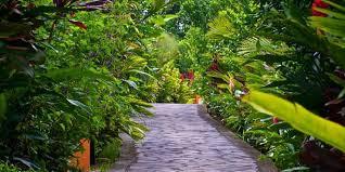 walking trails Nayara Spa and Gardens in La Fortuna