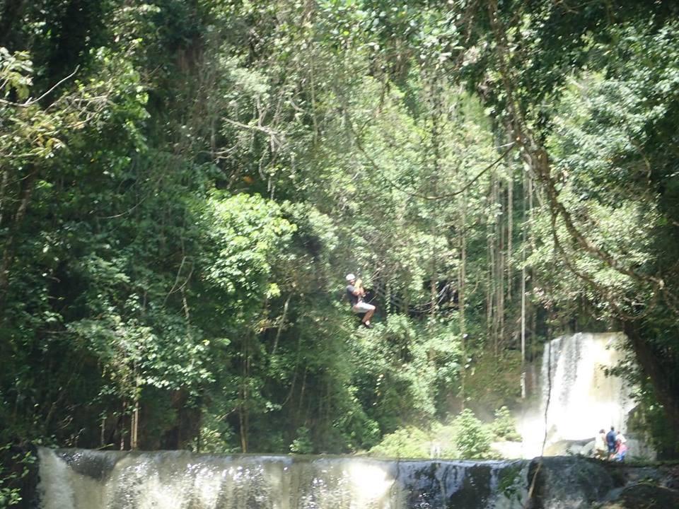 YS Falls Excursion
