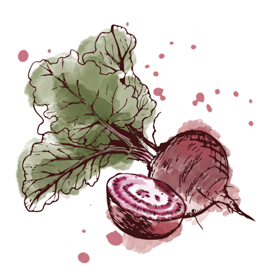 Rote-Beete2.png