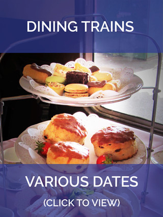 DINING TRAINS 210521 c.jpg