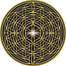 logo giallo nuovo ritagliato.png