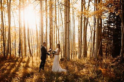 elopement-forrest(amybluestarphotography