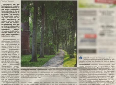 """""""Die Promenade erleben"""" (wersekurier Vorbericht)"""