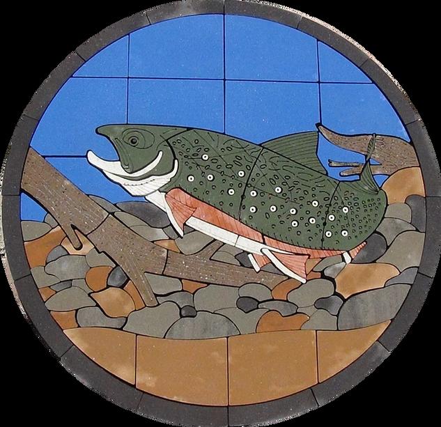 Striped Bass - SKU:  AB002