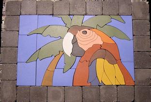 Tropical Parrot #2 - SKU:  TP001SP1