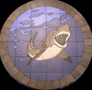 Shark - SKU: AS001