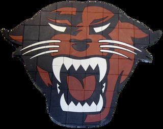 Davenport Paver Logo