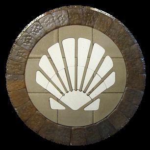 Scallop Shell - SKU: SAS001