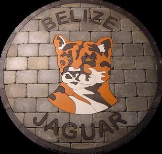 Belize Jaguar Paver Logo