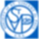 st-vincent-depaul-logo.png