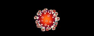 covid virus.jpg.png