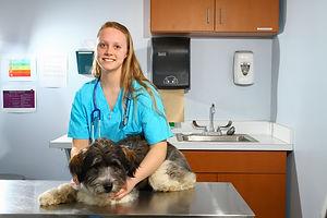 veterinary office.jpg