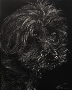 "8""x10"" scratchboard finished on Friday.j"