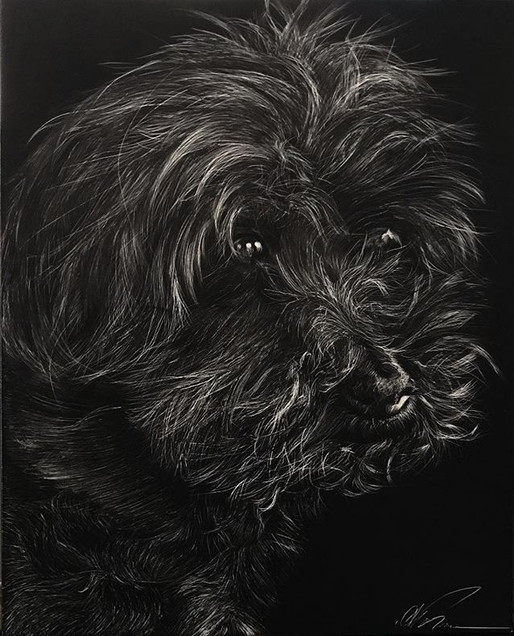 """8""""x10"""" scratchboard finished on Friday.j"""