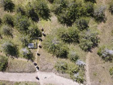 Team advancing to contact Blackline Simulations Airsoft Military Simulation Milsim Canada Canadian Guns Multicam ISR DJI Mavic Mini