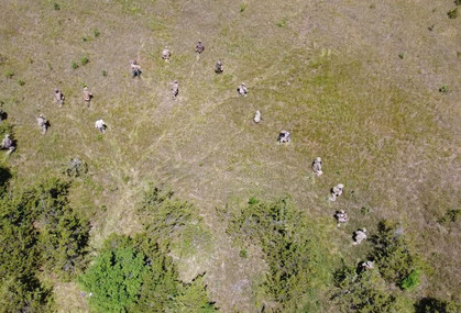 Open field wedge Team advancing to contact Blackline Simulations Airsoft Military Simulation Milsim Canada Canadian Guns Multicam ISR DJI Mavic Mini