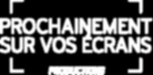 Logo_PSVE 2.png