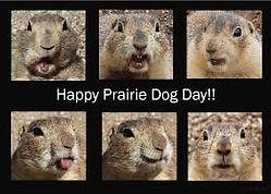 prairie_dog_picture day.jpg