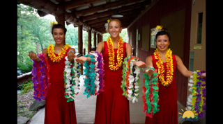 Hula Dancer Leis