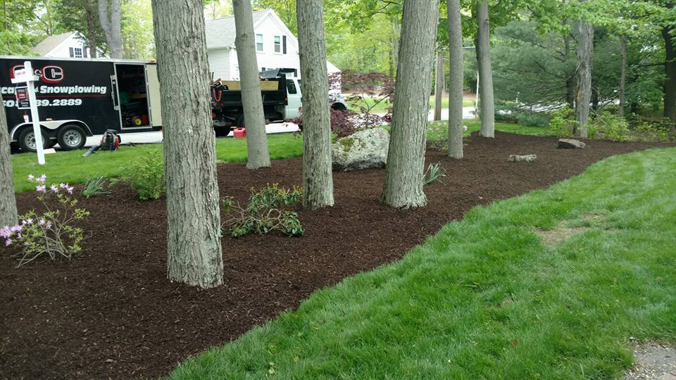 G&C Landscaping