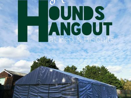 Hounds Hangout - NOW OPEN!