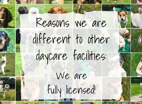 Reason 1:   We are fully licensed!