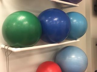 Equipment Spot Light on Stability Balls!