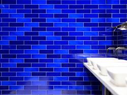 FBT Brick Slip Cobalt