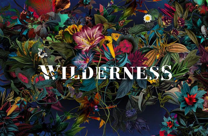 Wildnerss festival