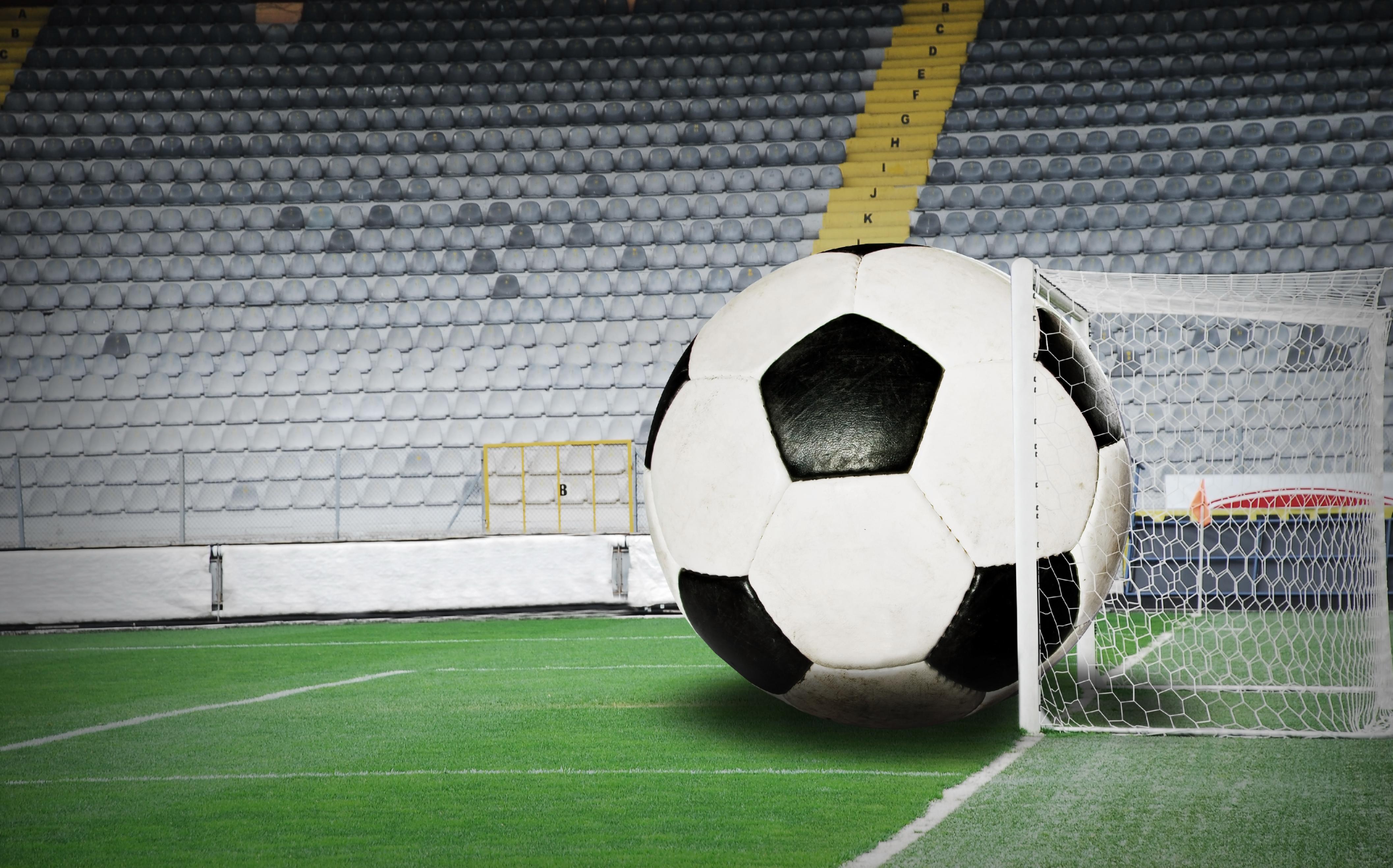 Sports (4)