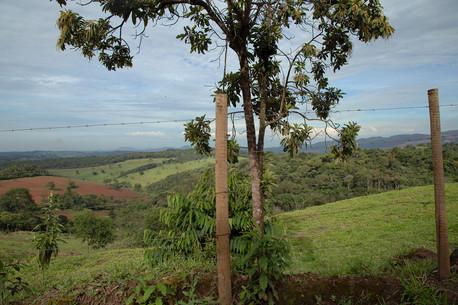 Estrada Real_Brasil 11