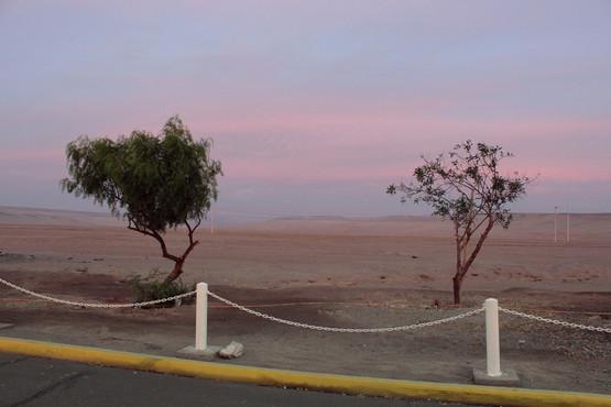 Chile_Peru _Chacalluta e Santa Rosa 05