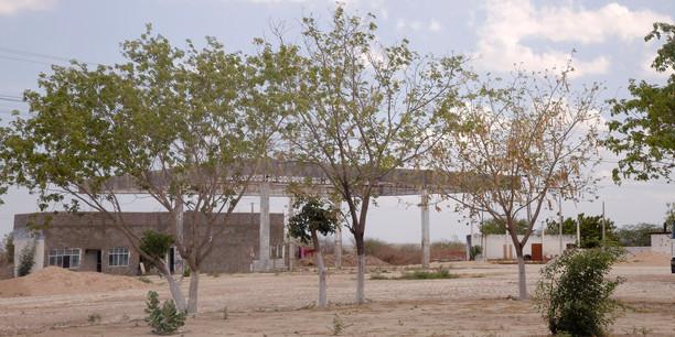 BR304_Rio Grande do Norte