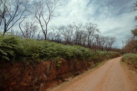 Estrada Real_Brasil 02