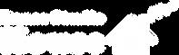 DSH (Logo).png