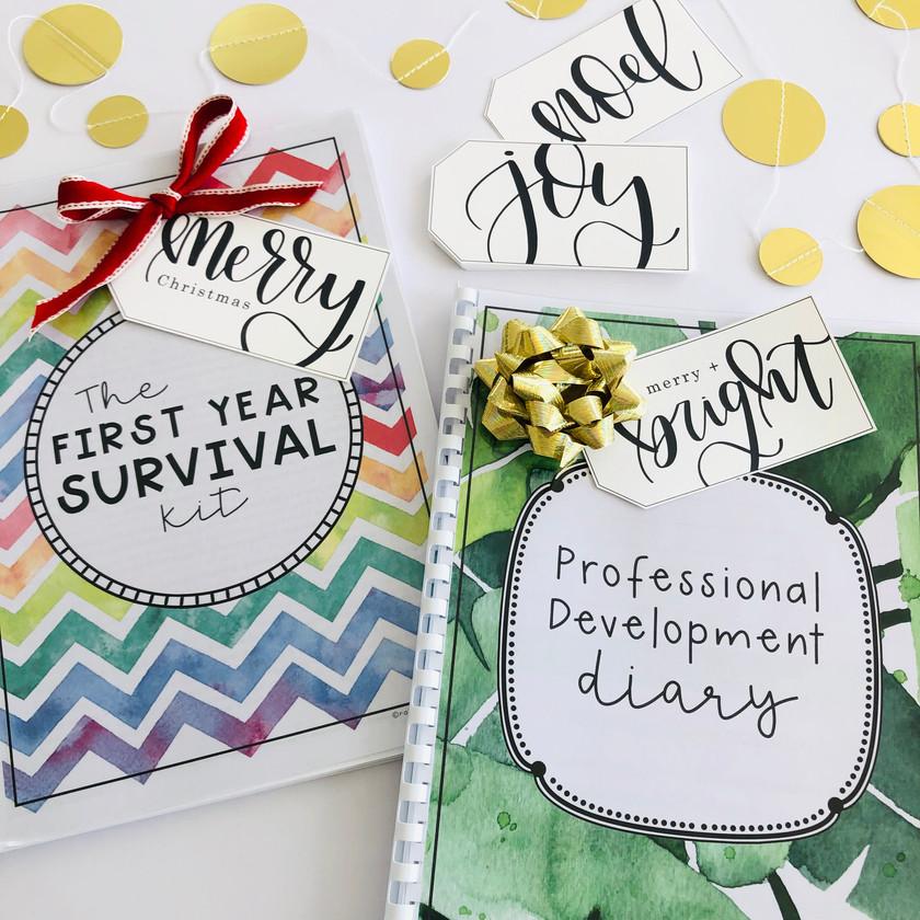 Teacher Professional Development Diary