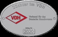 VDH 2020.png
