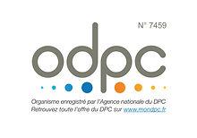 LOGO DPC (site).jpg