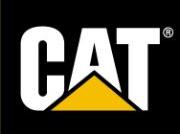 Southworth Milton Cat