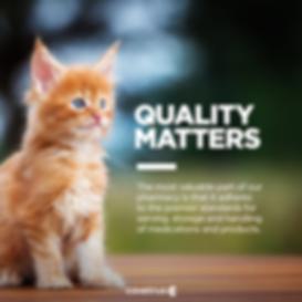 Quality_Cat_Evergreen_FBPost.png
