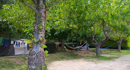 camping_5.png