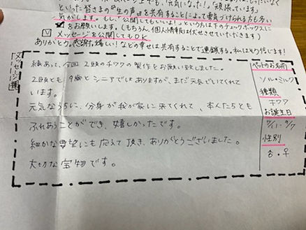 ソル・ミルク・チワワ.jpg