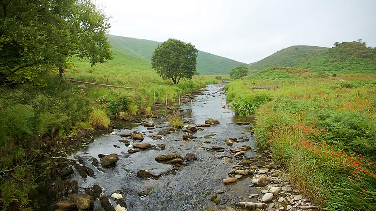 Discover Exmoor WILD Walking Weekend