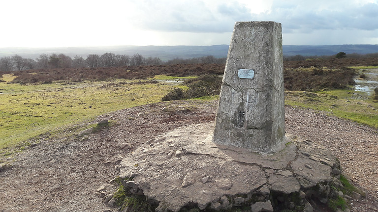 A Winter Walk on the Quantock Hills | Lydeard Hill, Wills Neck and Great Wood Circular