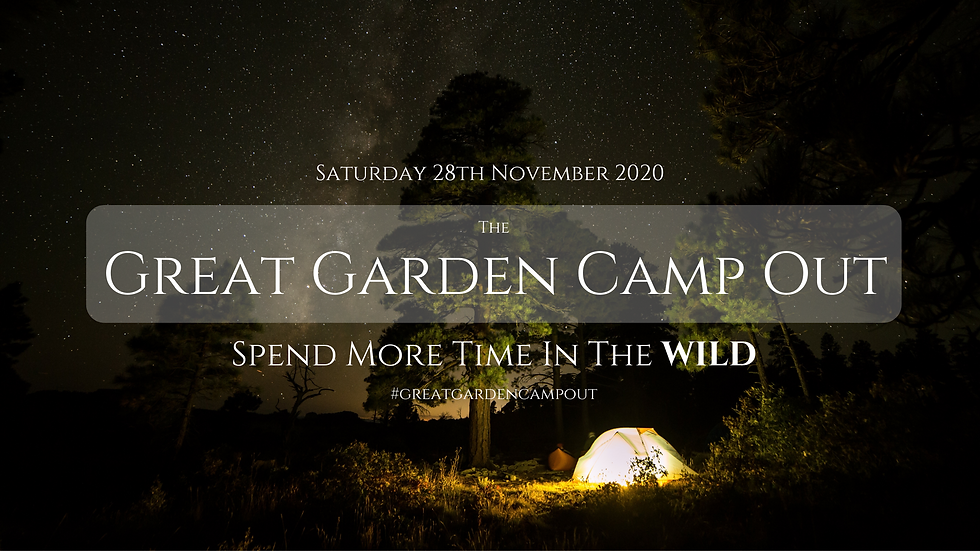Great Garden Camp Out-2.png