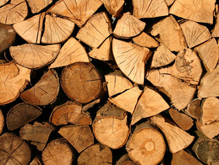 A 3-minute guide to firewood