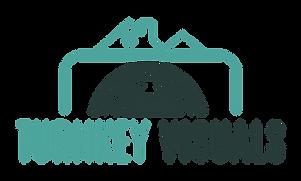 Turnkey Vis. Logo.png