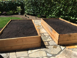 Edible garden raised beds